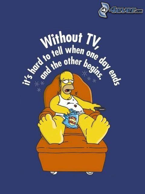 Homer Simpson, Los Simpson, televisión