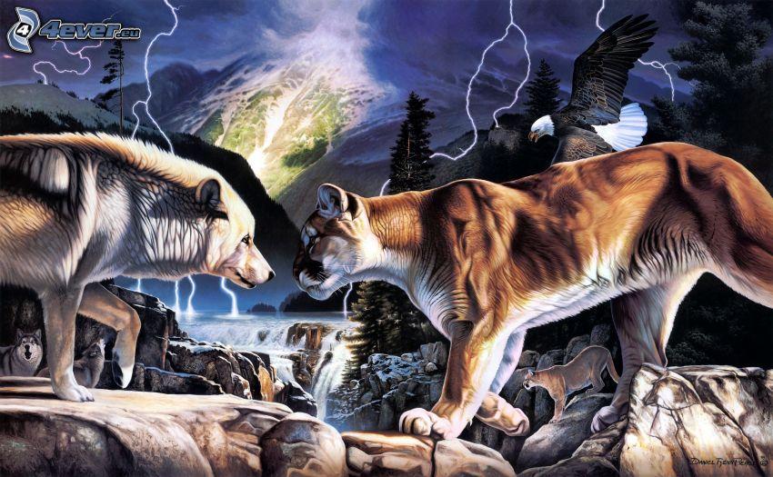 lobo en dibujos animados, puma, Haliaeetus leucocephalus