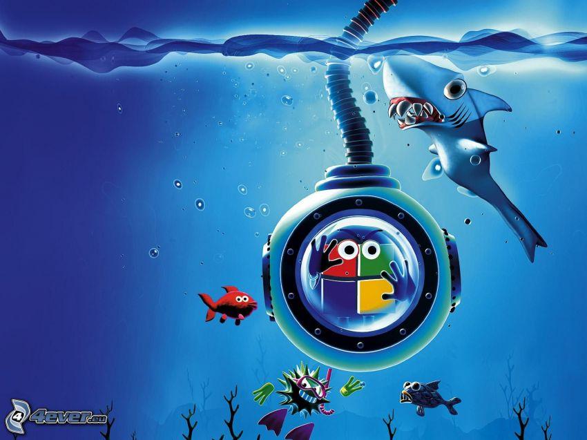 mar, tiburón, Windows