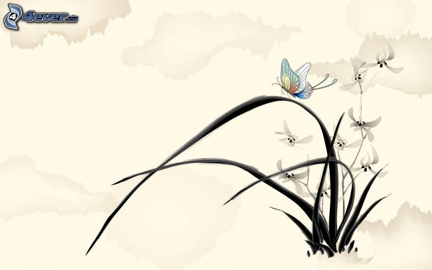 mariposa, flores blancas, paja de hierba