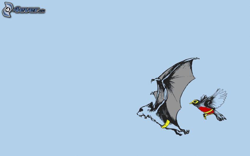 murciélago, pájaro, vuelo