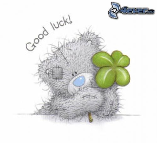 oso de peluche, trébol de cuatro hojas, good luck!, suerte