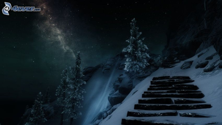 paisaje, escalera, árboles nevados, nieve, cielo de noche