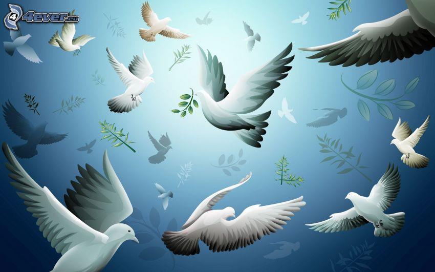 palomas, bandada de pájaros, ramita