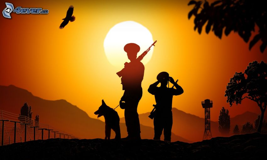 policías, pastor alemán, siluetas, puesta del sol