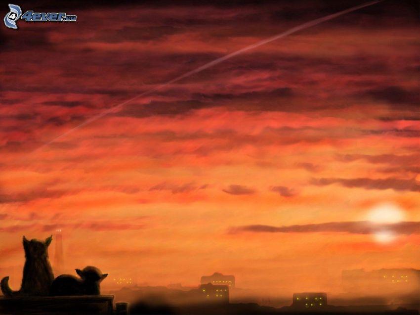 puesta de sol anaranjada, gatos, siluetas