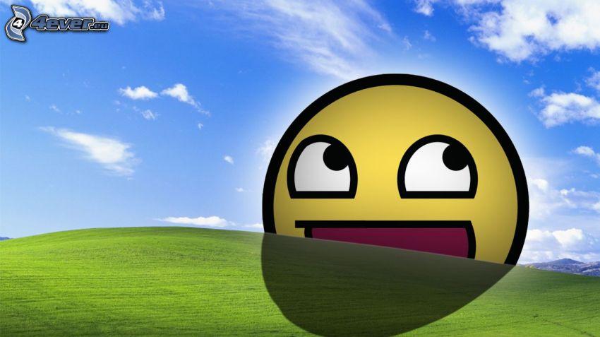 Smiley, campo, cielo