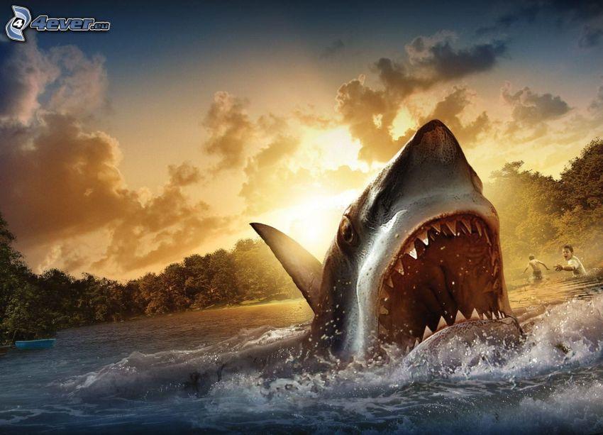 tiburón, morro, dientes, agua, niños, sol