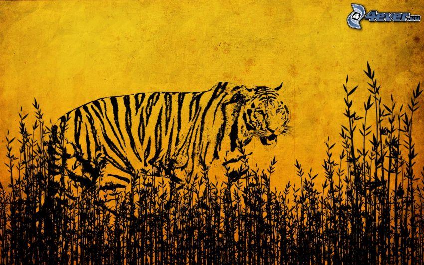 tigre, hierba