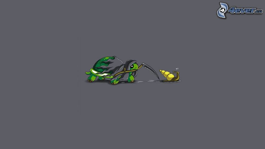 tortuga marina, guadaña, caracol