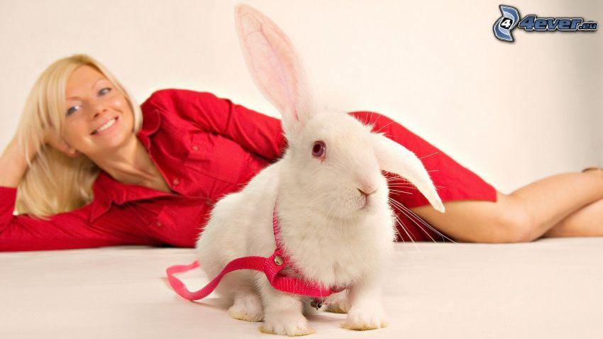 conejo, rubia