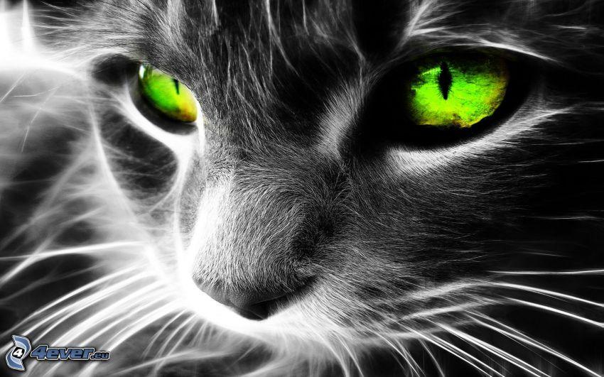 gato fractal, arte digital, ojos verdes