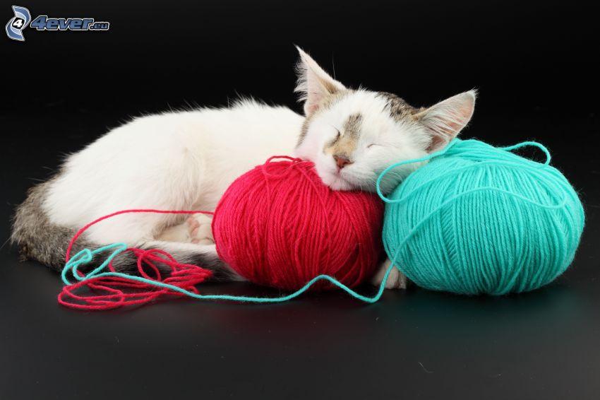 Gato que duerme, enredos, lana
