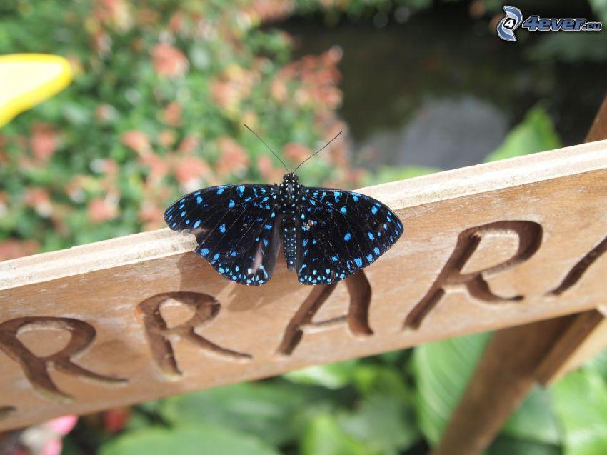 mariposa, letrero