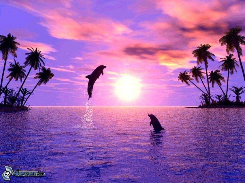 delfines, delfines saltando, puesta de sol sobre el mar, palmera, siluetas