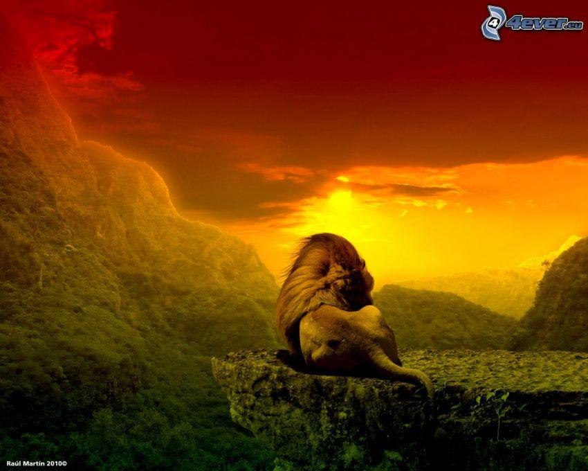 león, selva, puesta del sol