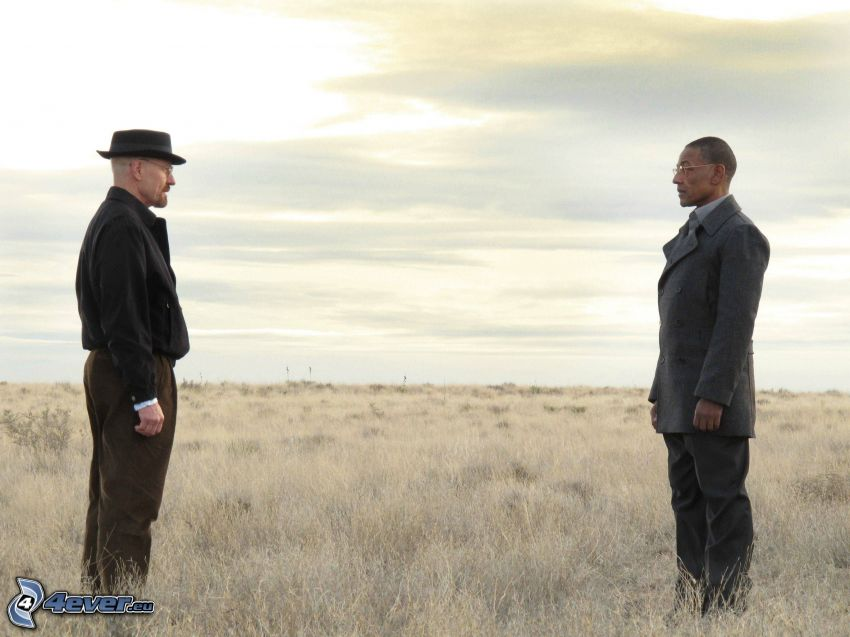 Breaking Bad, campo