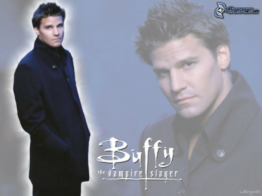 Buffy - vencedora de vampiros, David Boreanaz