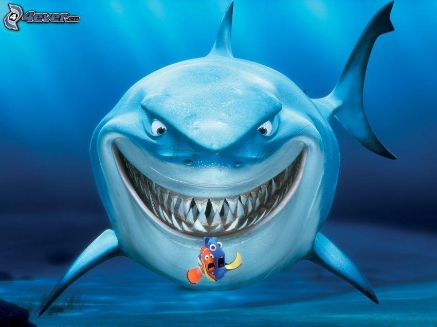 Buscando a Nemo, tiburón, Marlin, Dory