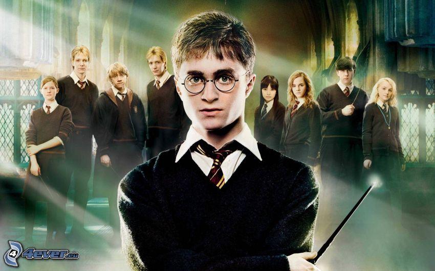 Harry Potter, estudiantes