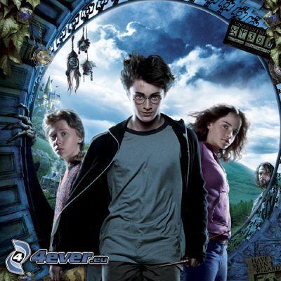 Harry Potter, Hermione, Ron, actores, actrices, películas