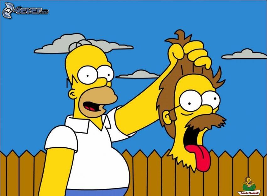 Homer Simpson, cabeza