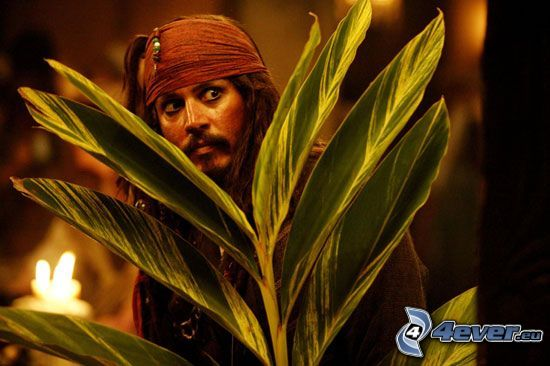 Jack Sparrow, Johnny Depp, Piratas del Caribe