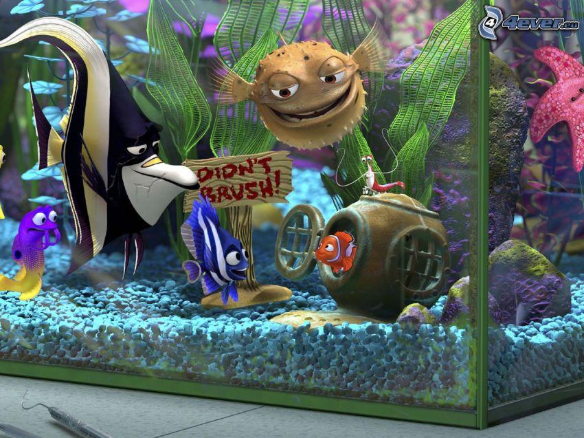 Nemo, acuario, Buscando a Nemo