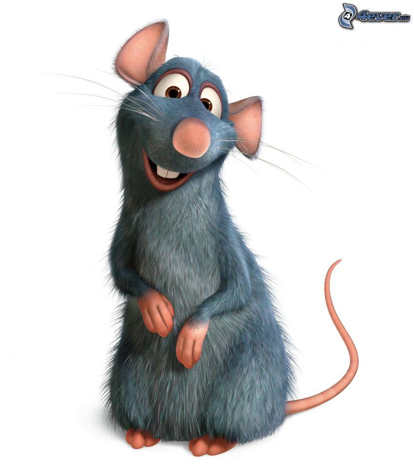 Remi, ratón, rata