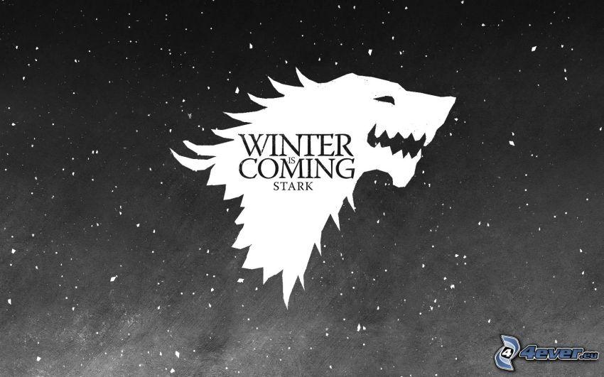 Winter is coming, lobo