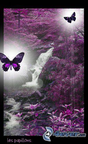 Mariposas, hojas de color púrpura, bosque