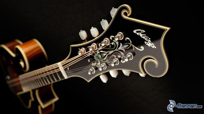guitarra, cabeza de guitarra