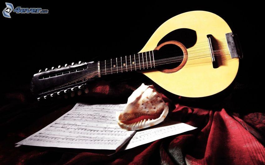mandolina, notas de música, concha