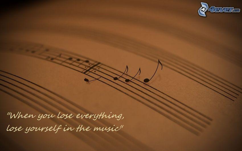 notas de música, libro