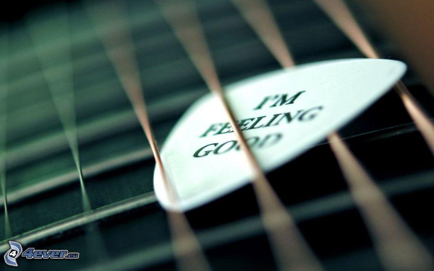 plectro, Strings
