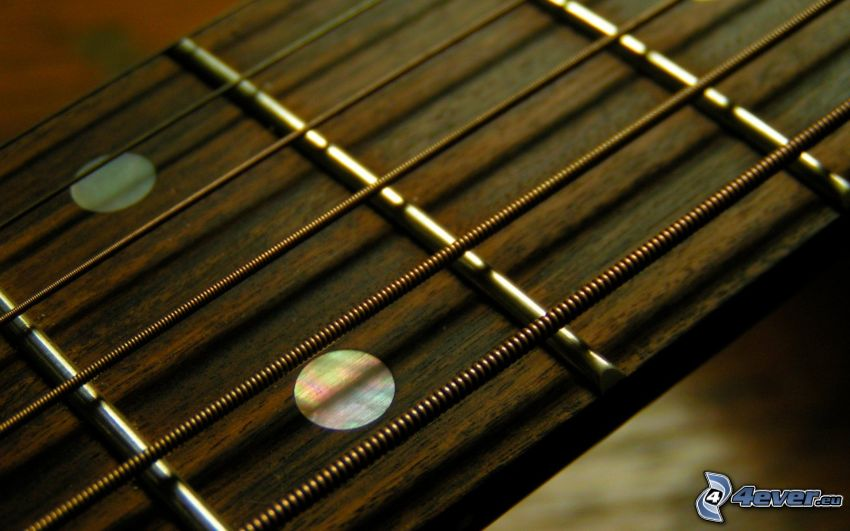 Strings, guitarra