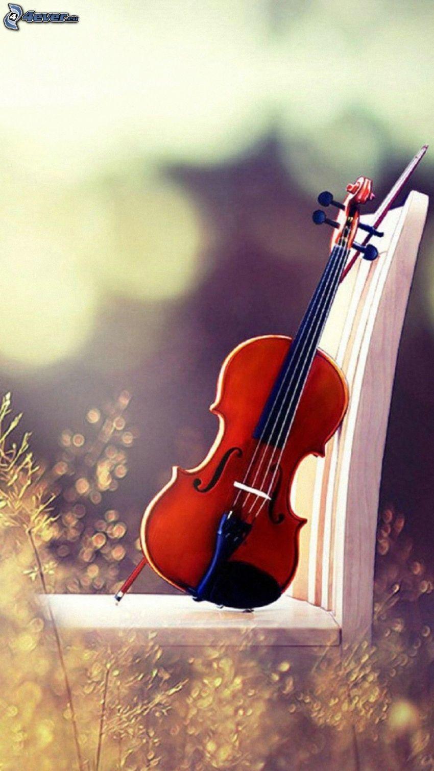 violín, silla