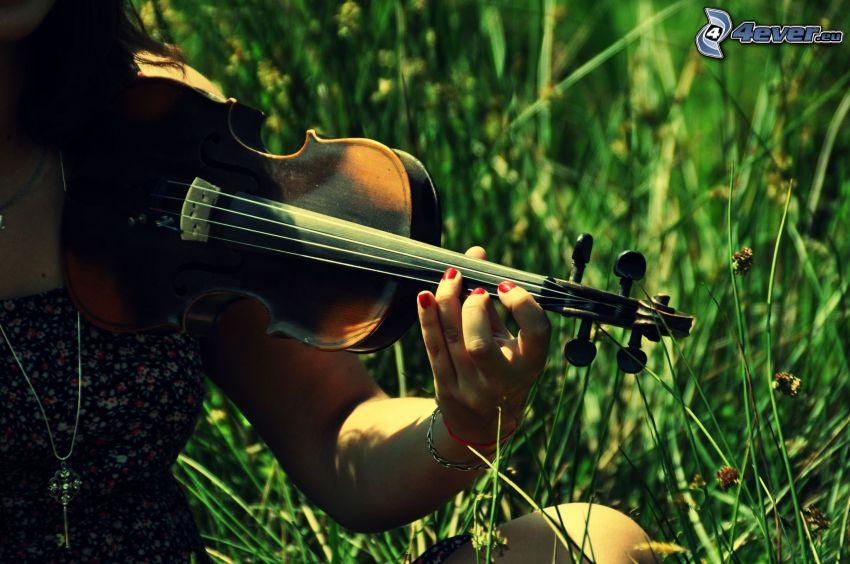 violinista, violín, hierba