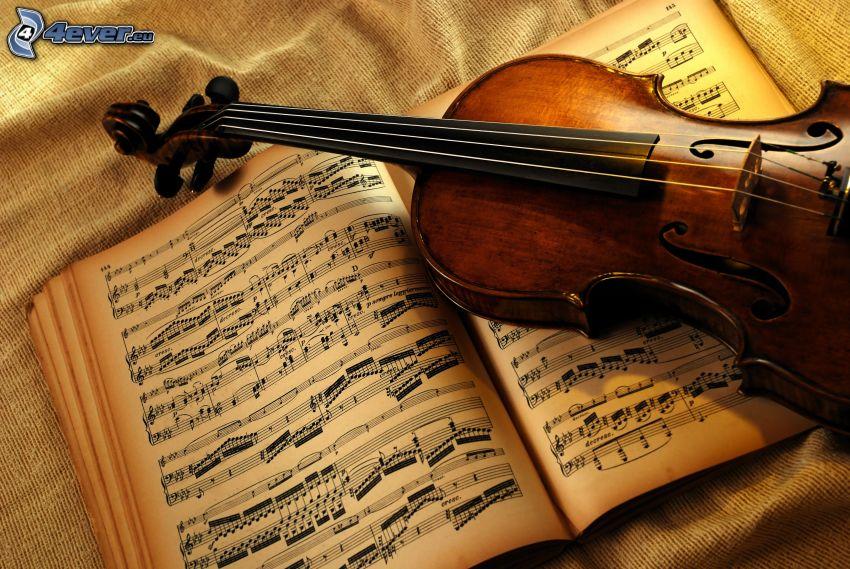 violonchelo, notas de música