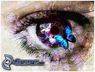 ojo, mariposa