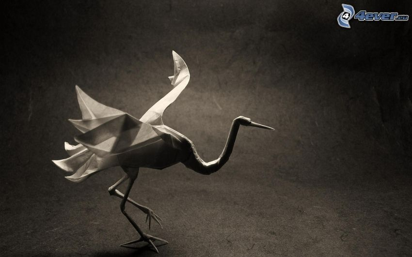 origami, cisne, Foto en blanco y negro