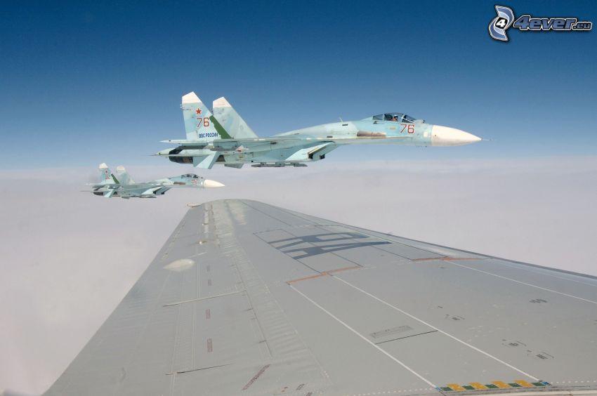aviones de caza, ala