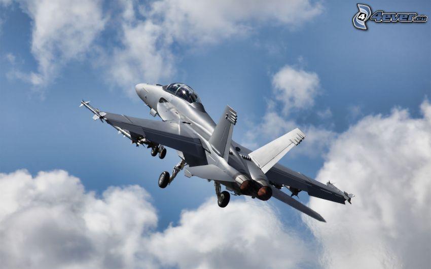 F/A-18 Hornet, McDonnell Douglas