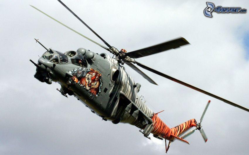 Mil Mi-24, tigre
