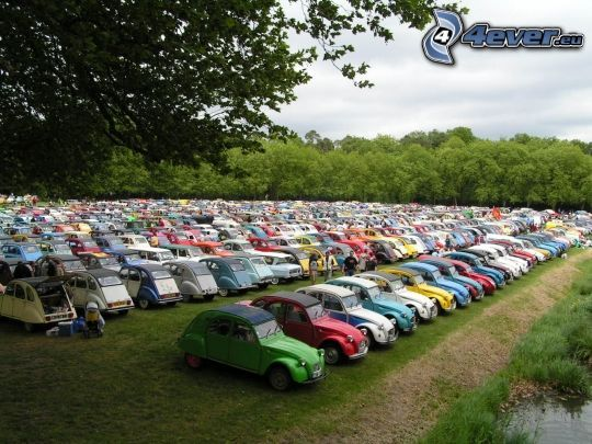 aparcamiento de coches antiguos, coches, prado