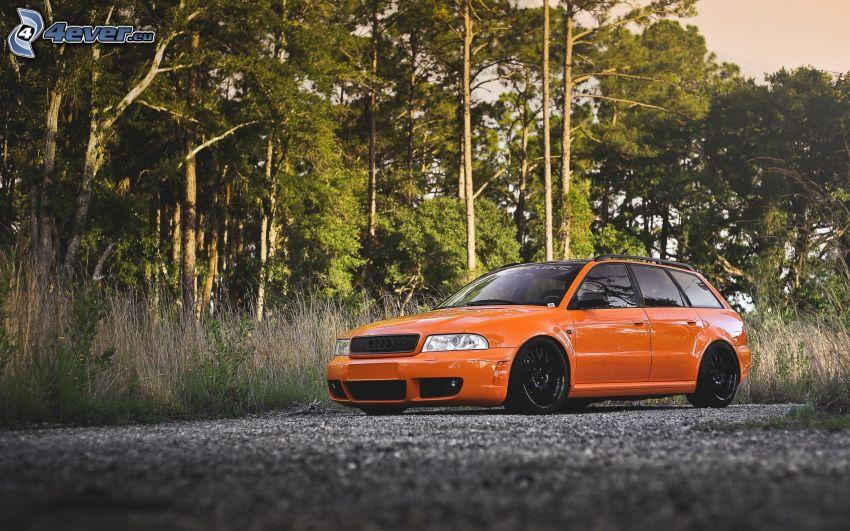 Audi RS4, bosque, camino