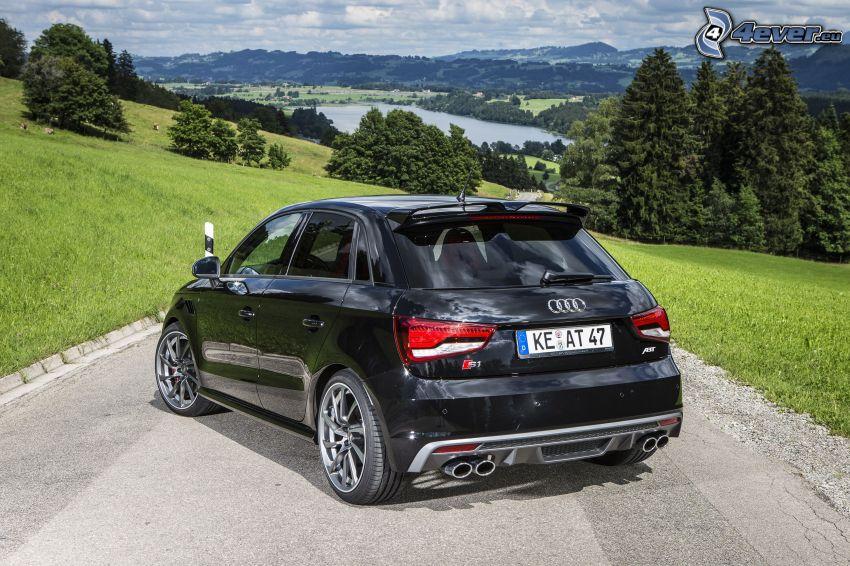 Audi S1, paisaje, bosque, lago