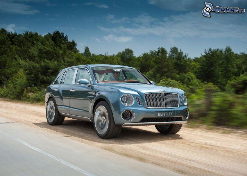 Bentley EXP 9F, acelerar, bosques de coníferas