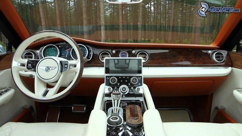 Bentley EXP 9F, interior, bosque