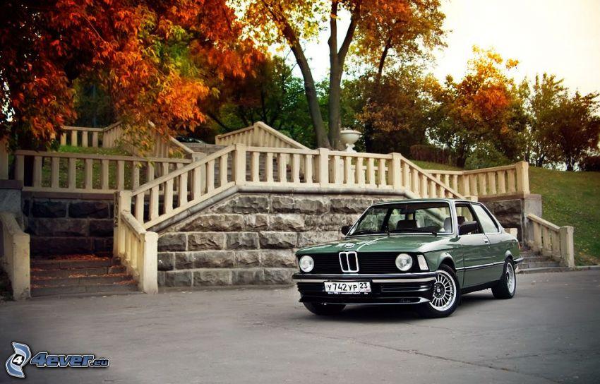 BMW E21, escalera, árboles otoñales
